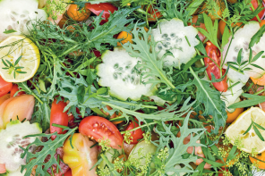 Mixed tomato and herb salad