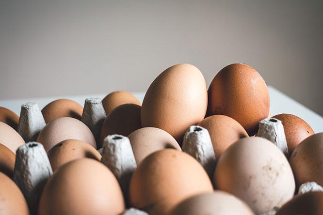 vitamin k eggs