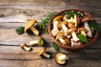 nutrition power of mushrooms - thrive magazine