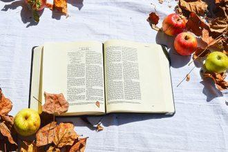 world book day - thrive magazine