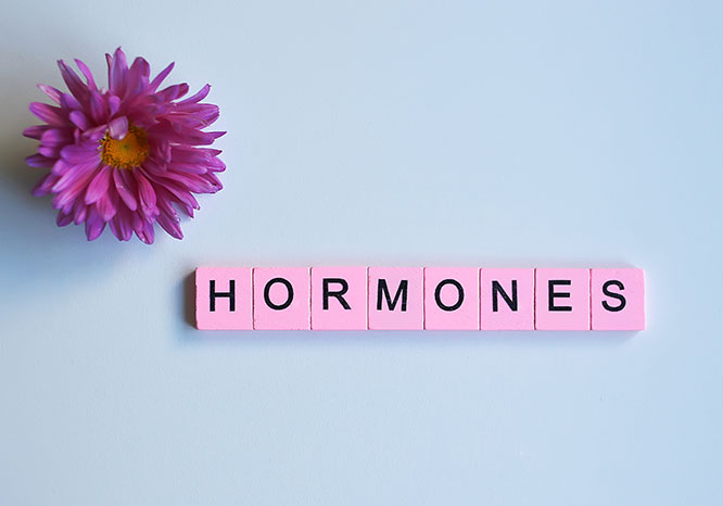hormones and diet
